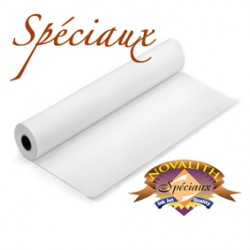Ink jet Transparency Clear Film - 17 inches roll (432mmx30M)